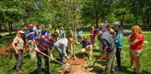 Students help plant a tree as a part at annual Arbor Day Celebration