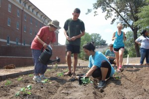 UM Students plant in the UM Garden by RC South
