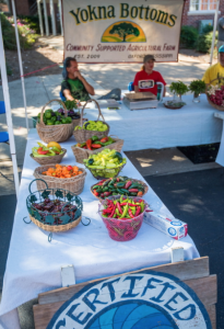 Yokna Bottoms Farms brings many varieties of fresh produce to Food Day to sell.